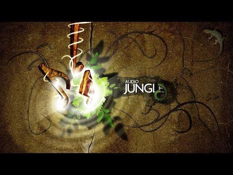 Music - Bright Memories   AudioJungle Download