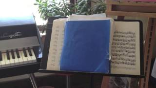 The Work - Inside a Musician's Practice