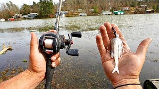 Pre-Spawn Bass HAMMER Chatterbaits in the Grass!!