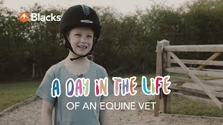A Day In The Life   Equine Vet