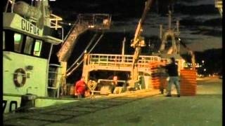 Video Desafios para a Pesca (Portugal da Terra ao Mar) download MP3, 3GP, MP4, WEBM, AVI, FLV Desember 2017