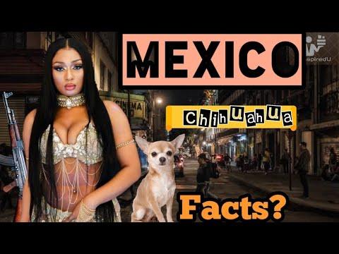 Mexico ( मेक्सिको मै फटी मैक्सी 👙)    Interesting facts in hindi   Inspired You