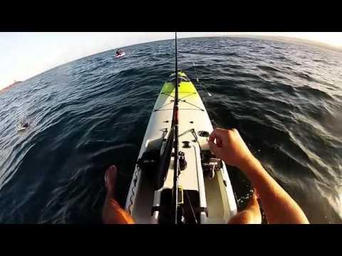 Tuna off a paddle ski at umhlanga. Salt Fishing SA