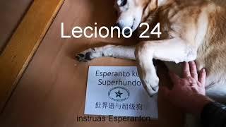 Lernu Esperanton kun Superhundo! – Leciono 24