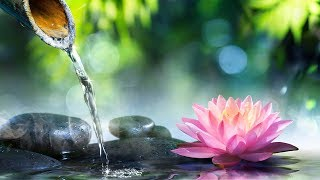 Relaxing Music 24/7, Reiki Healing Music, Calm Music, Medita...