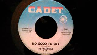 Wildweeds - No Good To Cry - Northern Soul / Pop / Rock Crossover
