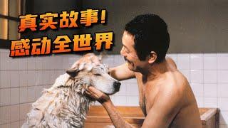 真實故事改編超100萬人只看過它的翻版卻不知道原版更催淚《忠犬八公物語》