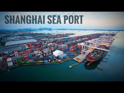 Shanghai port China || we are discharging coal in Shanghai p
