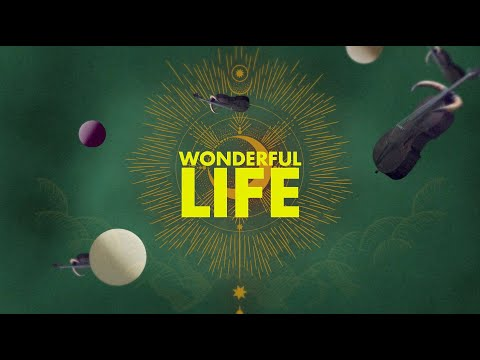 Wonderful Life (Stream Jockey Rework) - LYRICS VIDEO