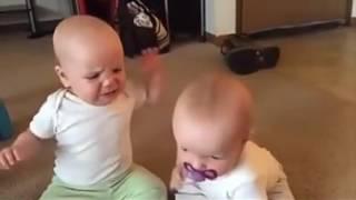 Bebês engraçados brigando por um bico. thumbnail