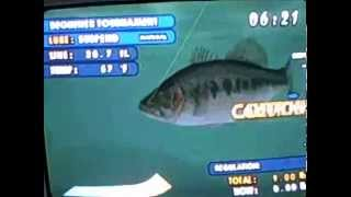 fishermans bass club largest bass in the game: dam