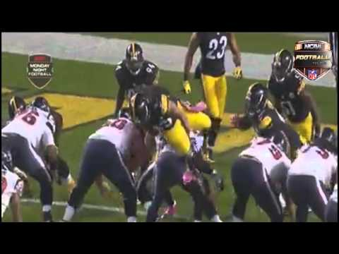 Troy Polamalu jumps over Texans line before snap, kicks QB in the face 2014
