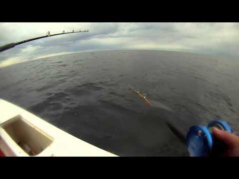 Haddock  Fishing 4/14/2013 - Gloucester MA
