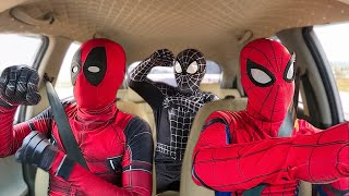 ALL SUPERHEROS Dancing In The Car | Spider-Man, Venom, Deadpool and Spider-Gwen