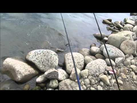 How To Catch Cachuma Lake TROUT: Stealth Mission & Fish Cleaning Tips