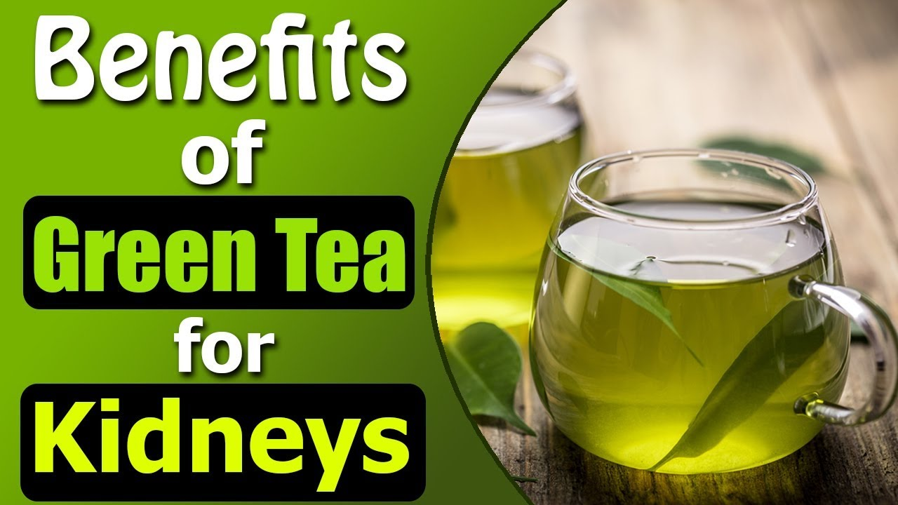 benefits of green tea for kidneys | kidney expert and