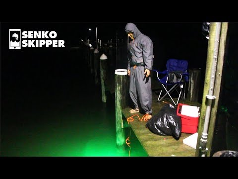 Pier Fishing Using Glowing Fish Kryptonite
