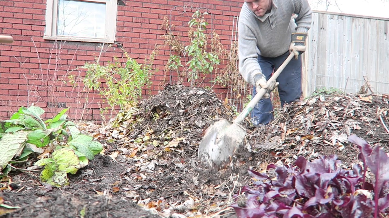 Watch How to Compost Leaves video