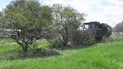 Green Energy Harvesting - Biomass Citrus Removal