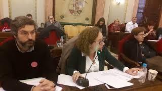 Pleno noviembre 2017 - Alicia Morales sobre Museo Gaya