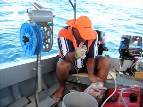 Aruba Fishing