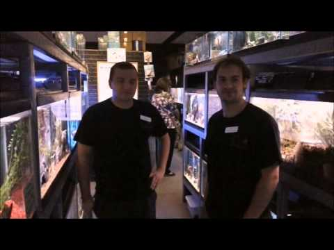 Absolutely Fish's Walk Around the Shop, Part 2!
