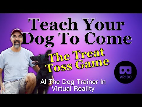 Teaching Your Dog To Come in VR180 - The Treat Toss Game
