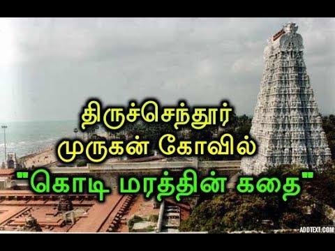 """திருச்செந்தூர் முருகன் கோவில் கொடி மரத்தின் கதை""""! Thiruchendur Murugan Kovil Kodi Marathin Kadhai"""