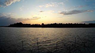 Дунай, Вилково. Второй день рыбалки с комфортом. Рыбалка в сентябре в дельте Дуная