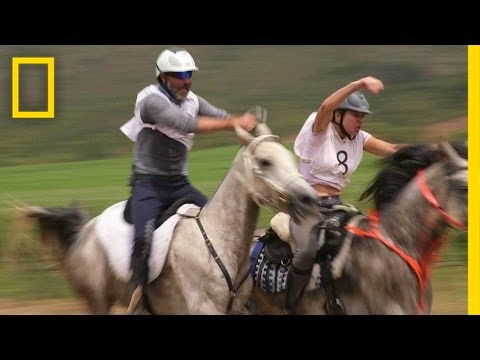 Grueling 80-Mile Horse Race Demands More Than Speed | National Geographic
