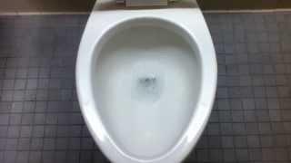 [436] Mid 1990's Kohler Highcliff Toilet And Newer Crane Embassy Urinals