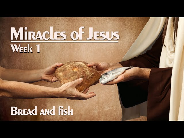 Kids in Action - ONLINE EXPERIENCE MIRACLES OF JESUS - MAY 3 kids ministry Kids Ministry sddefault