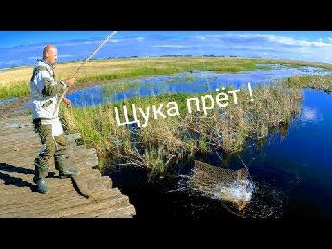 Рыбалка на паук Рыбалка на щуку Рыбалка на подъемник рыбалка 2019 Приколы на рыбалке