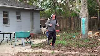 Funny Dogs Chase Owner | Tonka the Malamute & Monroe the Husky