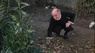 Скупой (1980)
