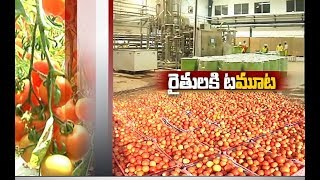 Jaikisan AP | 1st May'19 |  Operation Greens for Tomato Porcessing by AP Food Processing