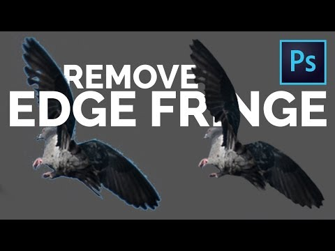 2 Easy Tricks to Remove White Edges or Fringes from Cut-Outs in Photoshop
