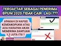 KENAPA E-FORM BERTANDA HIJAU (LOLOS) BERUBAH MENJADI MERAH (GAGAL) BPUM 2021 ?