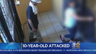 Police: 10-Year-Old Girl Attacked In The Bronx