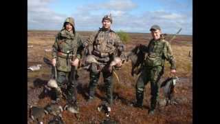 Охота на гуся 2013 весна