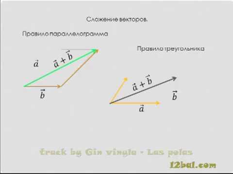 Вектор, определение и действия  Урок 1