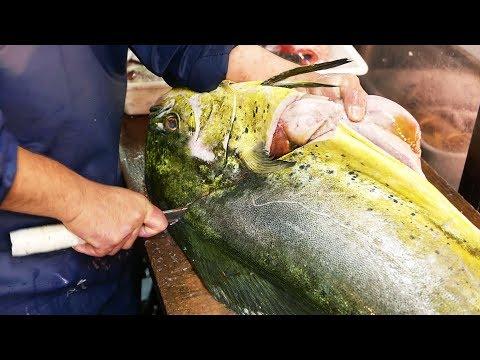 Makanan Jalanan Jepang - Ikan Mahi Mahi Raksasa Jepang Makanan Laut
