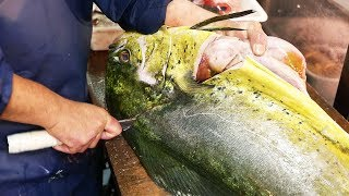 Japanese Street Food - GIANT MAHI MAHI FISH Japan Seafood