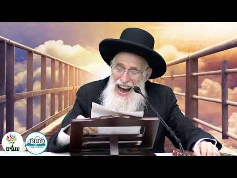 פרשת שבוע לך לך - הרב יהודה יוספי -HD - שידור חי