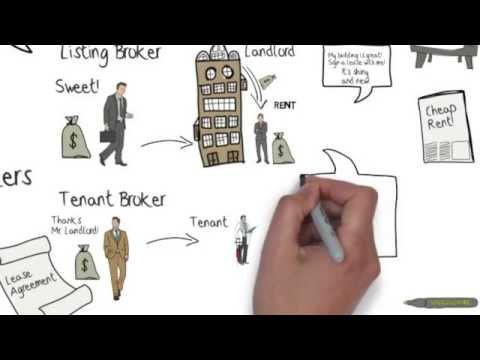 Commercial Real Estate Basics - Orlando, Florida