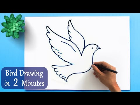 ✅ How To Draw A Bird In 2 Minutes | Bird Drawing Easy Tutorial