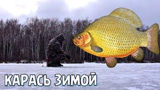 Толковое обучение ловли карася в конце зимы и глухозимье Как ловить карася в глухозимье