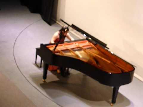 Pianista Japonesa Yu Kosuge