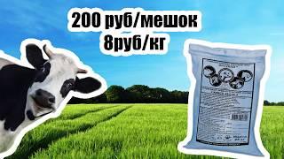 Корм для коров Живой белок АКЦИЯ