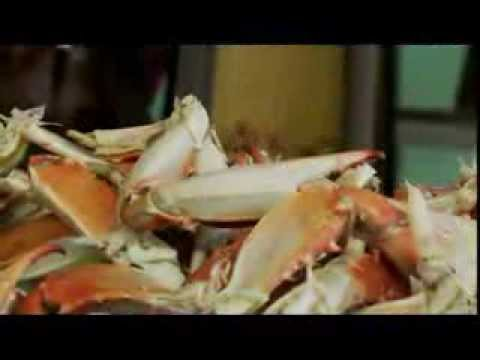 Andrew Zimmerman & Bizarre Foods America visits the J.M. Clayton Seafood Company